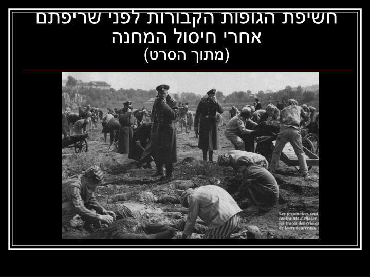 חשיפת הגופות הקבורות לפני שריפתם אחרי חיסול המחנה