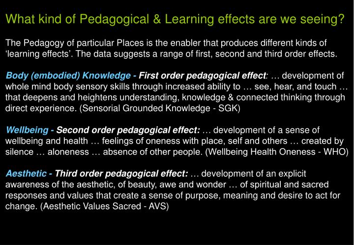 What kind of Pedagogical & Learning effects are we seeing?