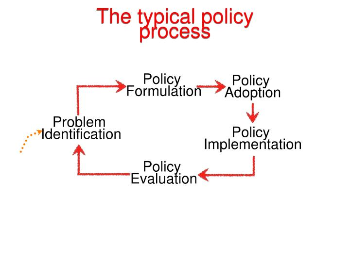 The typical policy process