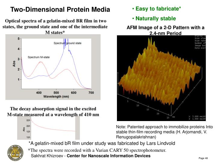Two-Dimensional Protein Media