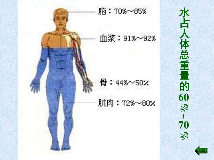 水占人体总重量的