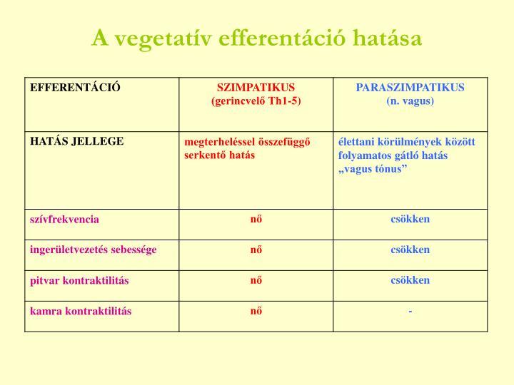 A vegetatív efferentáció hatása
