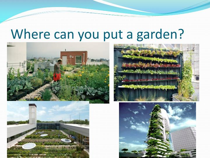 Where can you put a garden?