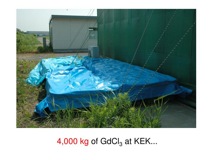 4,000 kg