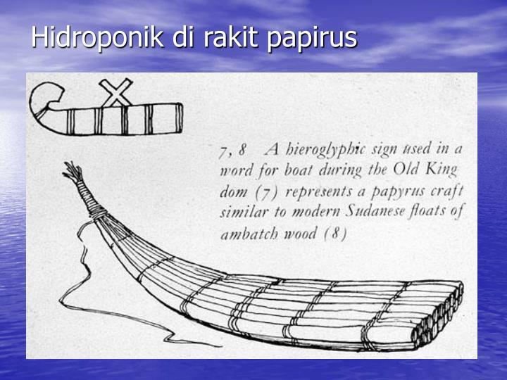 Hidroponik di rakit papirus