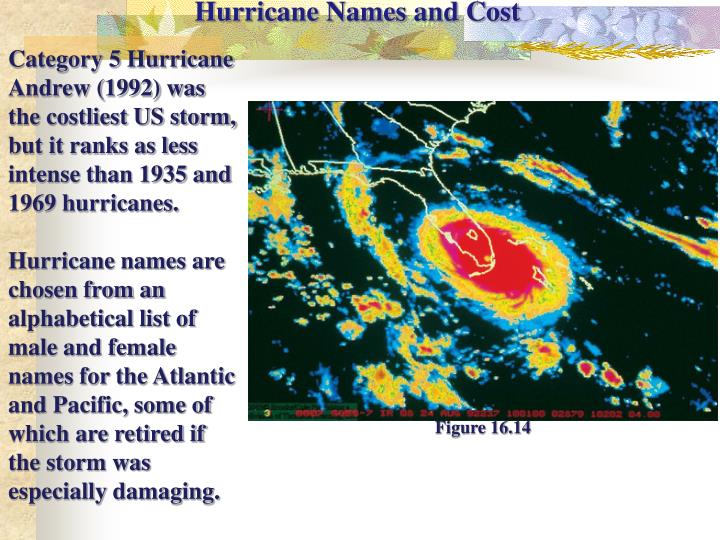 Hurricane Names and Cost