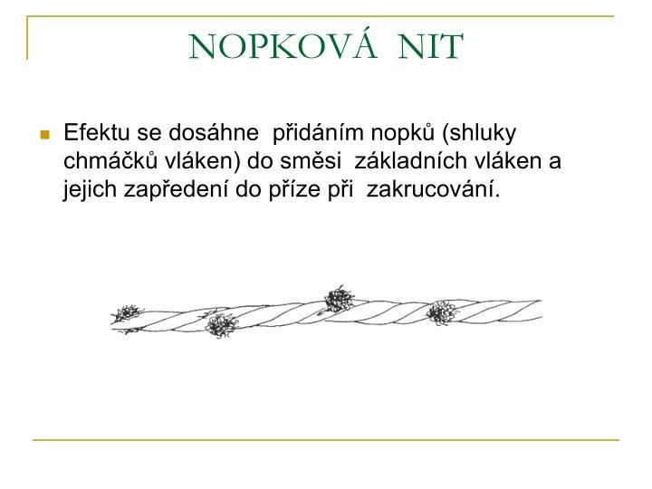NOPKOVÁ  NIT
