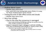 aviation grids shortcomings