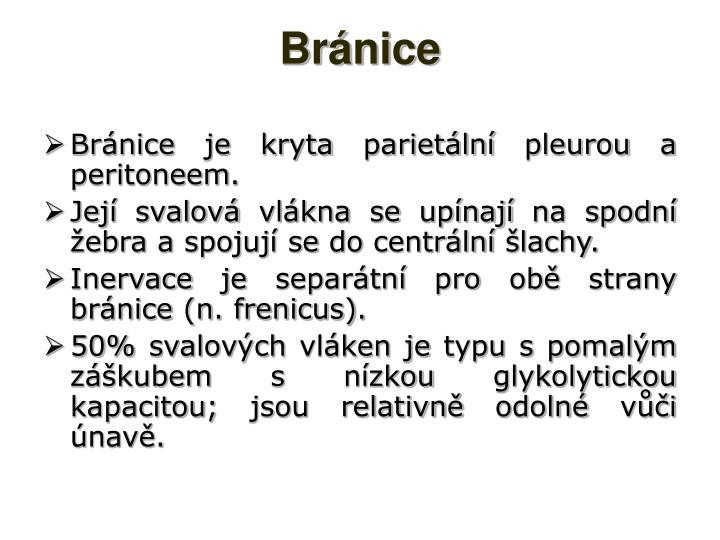 Bránice