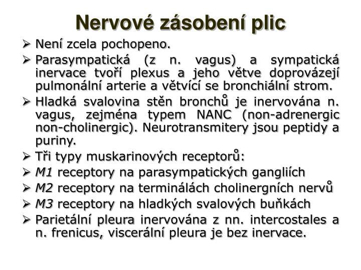 Nervové zásobení plic