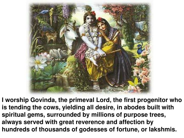 I worship Govinda, the primeval Lord, the first progenitor who is tending the cows, yielding all desire, in abodes built with spiritual gems, surrounded by millions of purpose trees, always served with great reverence and affection by hundreds of thousands of godesses of fortune, or lakshmis.