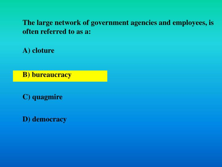 The large network of government agencies and employees, is often referred to as a: