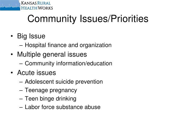 Community Issues/Priorities