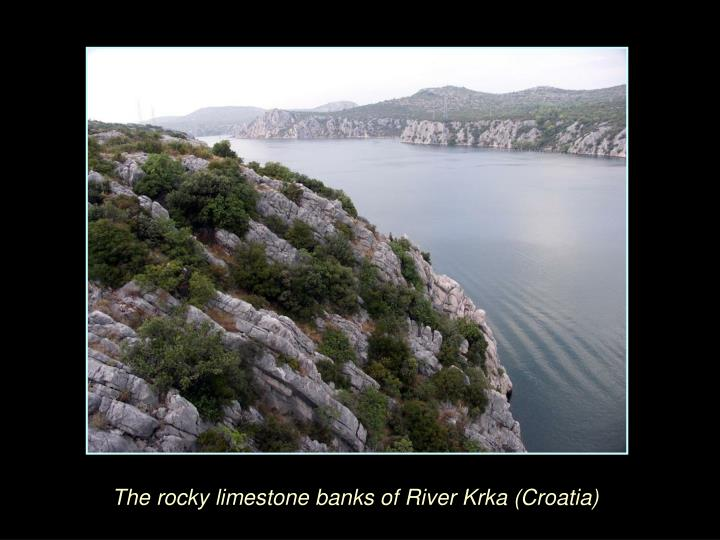 The rocky limestone banks of River Krka (Croatia)