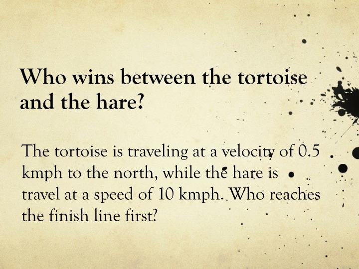 Who wins between the tortoise and the hare?