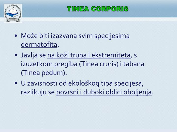 TINEA CORPORIS