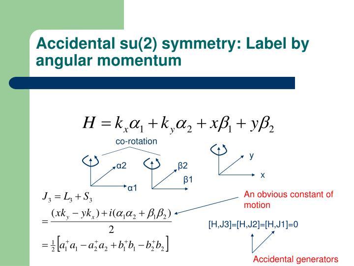 Accidental su(2) symmetry: Label by angular momentum