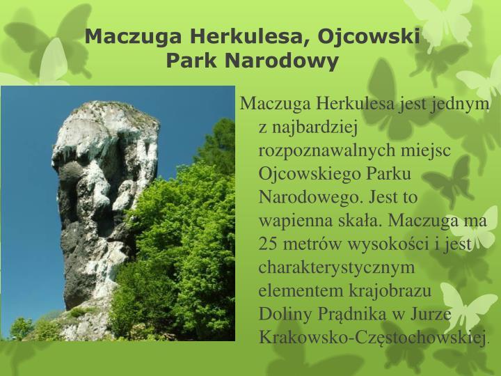 Maczuga Herkulesa, Ojcowski Park