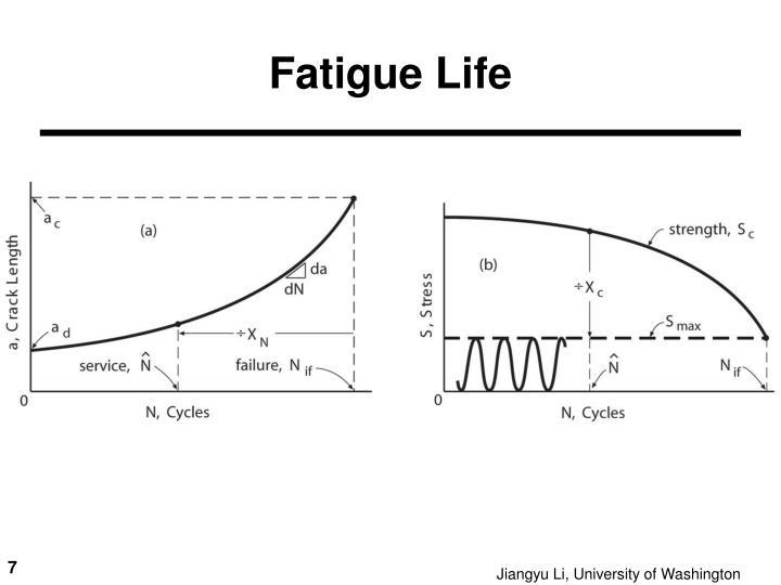 Fatigue Life