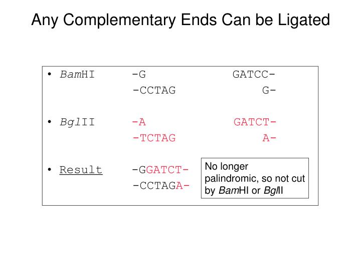 Any Complementary Ends Can be Ligated