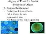 4 types of plantlike protist unicellular algae1