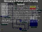 glossary in pumps and pumping system23