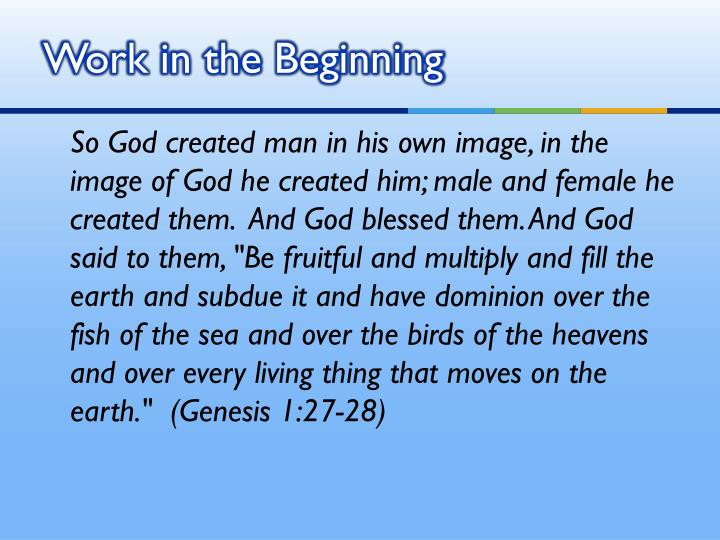Work in the Beginning