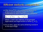 efficient similarity computation