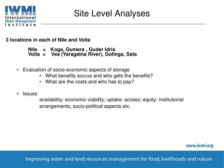Site Level Analyses