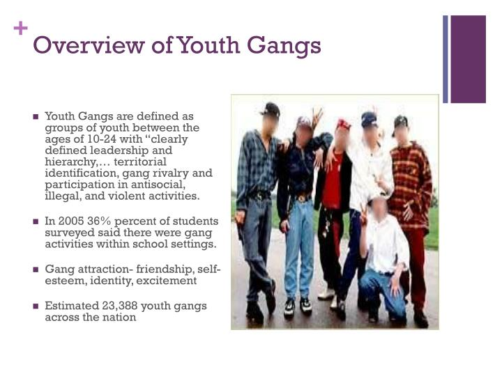 Overview of Youth Gangs