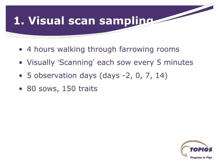 1. Visual scan sampling