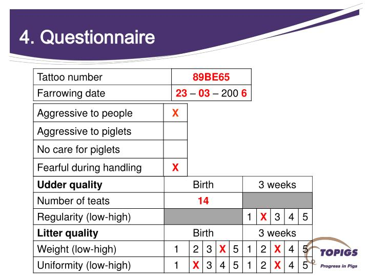 4. Questionnaire