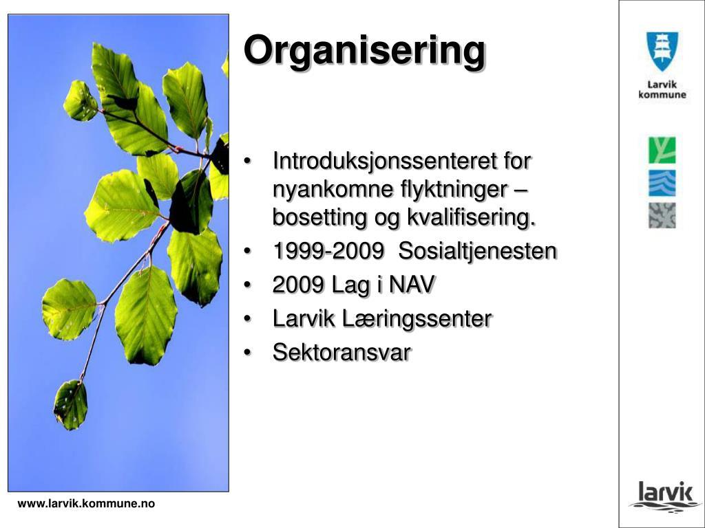 enslig i larvik brønnøysund singelklubb