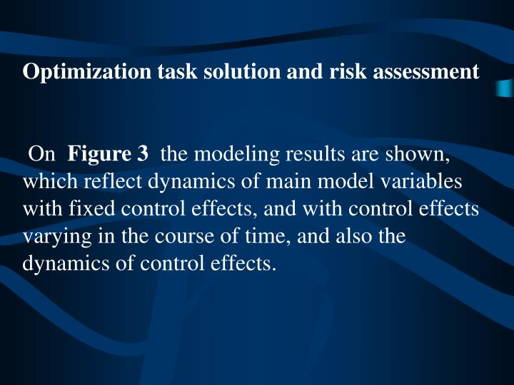 Optimization task solution and risk assessment