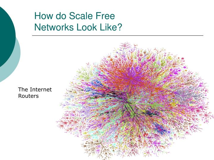 How do Scale Free
