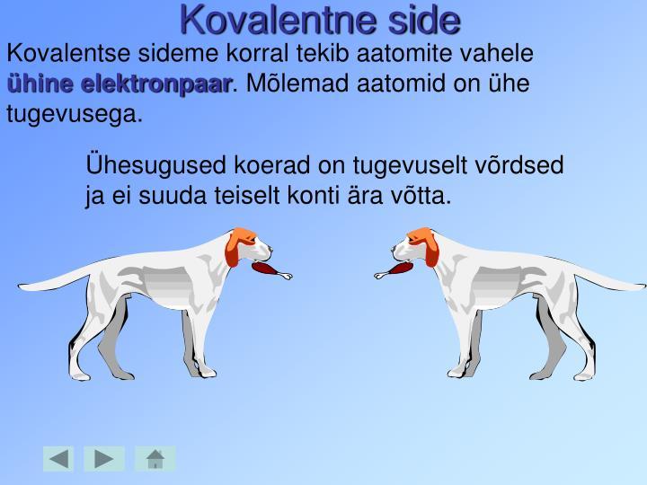 kovalentne side