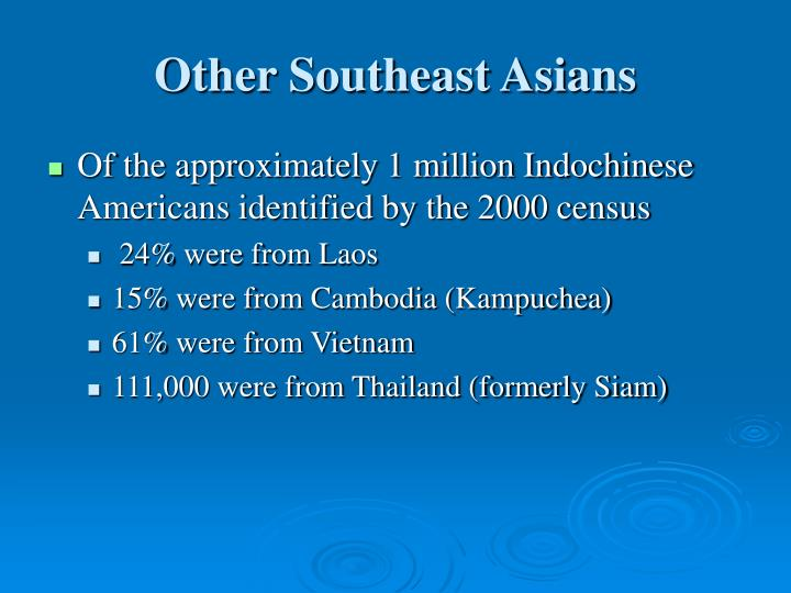 Other Southeast Asians