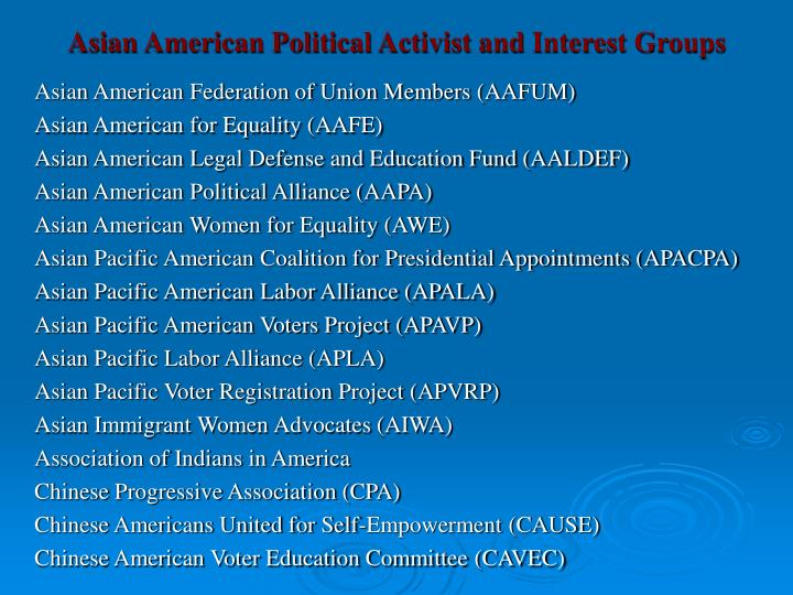 Asian American Political Activist and Interest Groups