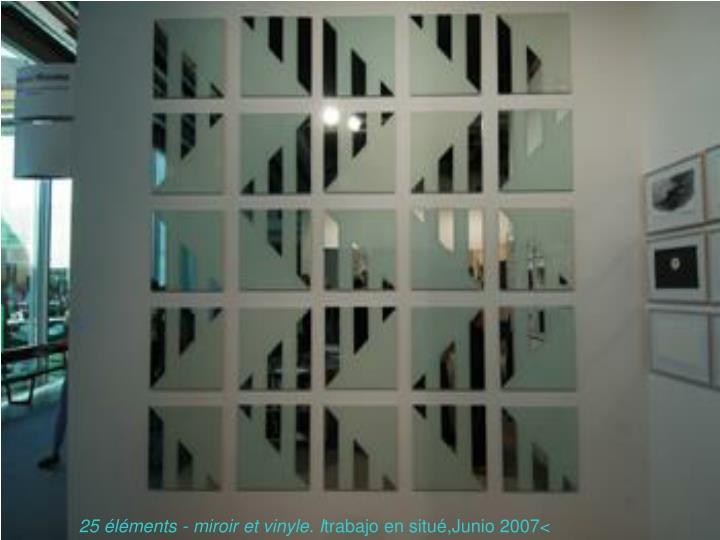 25 éléments - miroir et vinyle. I