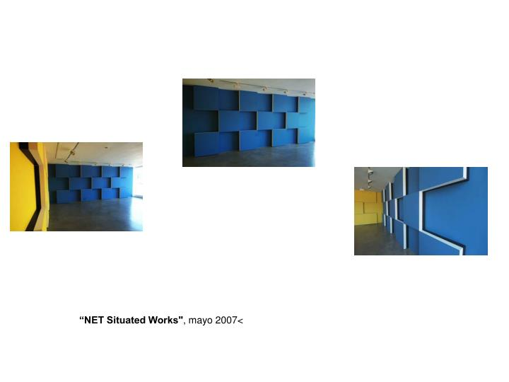 """""""NET Situated Works"""""""