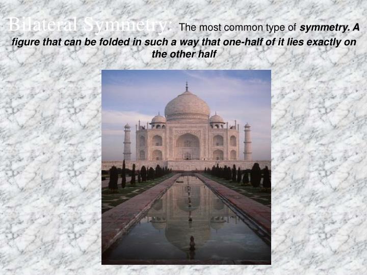 Bilateral Symmetry:
