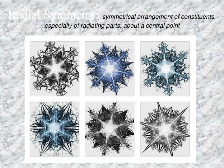 Radial Symmetry: