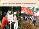 plant trees and protect our environment