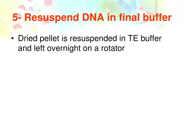 5- Resuspend DNA in final buffer