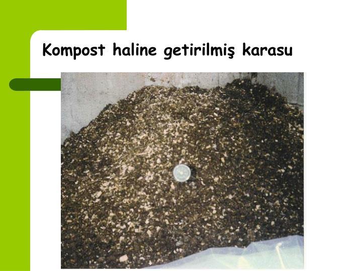 Kompost haline getirilmiş karasu
