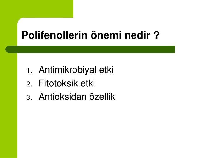 Polifenollerin önemi nedir ?