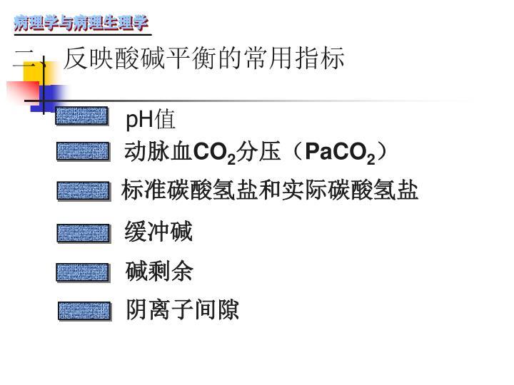 二、反映酸碱平衡的常用指标