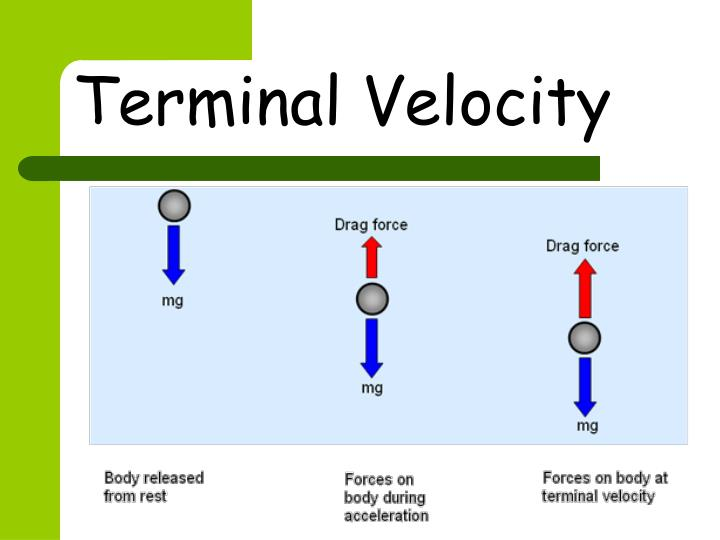 lab terminal velocity Stokes law and terminal velocity - duration: lab 161 speed of sound - duration: velocity of sound in air experiment edunovus online smart.