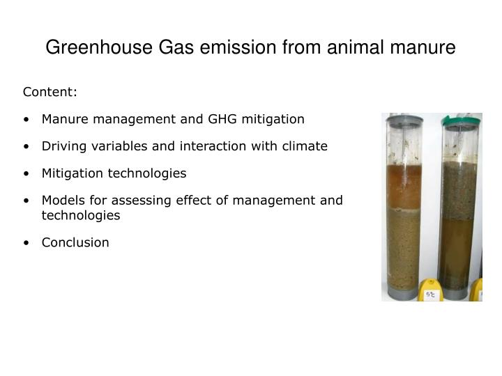 Manure is the source of the gases: