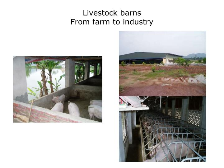 Livestock barns from farm to industry
